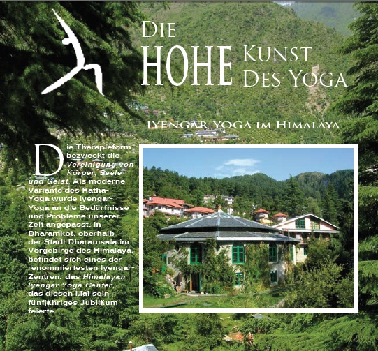 YOGA-webseite-homepage-relaunch-wien-wordpress-blogbild (20)