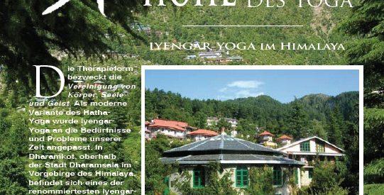 YOGA-webseite-homepage-relaunch-wien-wordpress-blogbild-20