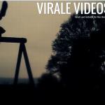 viralevideos-oton