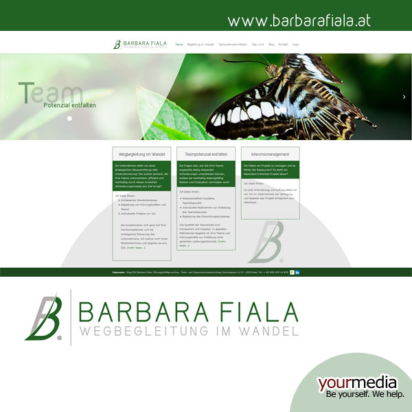 webdesign-wordpress-bf